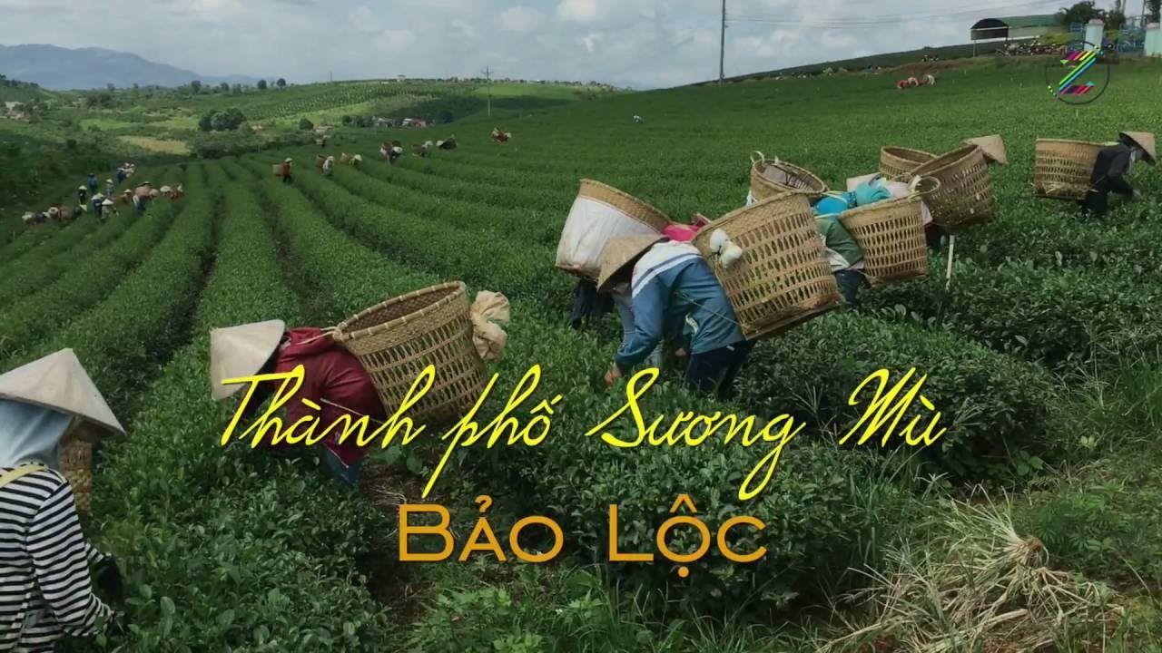 Thành phố Bảo Lộc - Lâm Đồng phát triển dựa trên bản sắc riêng