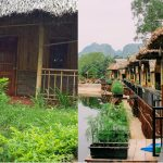 Farmstay sự kết hợp du lịch nông nghiệp và nương tựa thiên nhiên