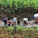 5 lý do giúp Farmstay trở thành nơi giáo dục trẻ tuyệt vời